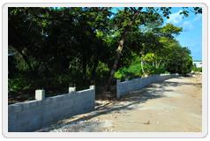 Instituição Parque Ecológico Cuiá